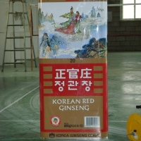 Ginseng Can<br/>h 1900 x 500 x 1000 mm / urethane, Styrofoam, mixed media / 2012